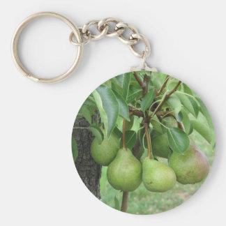 Llavero Peras verdes que cuelgan en un peral creciente
