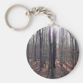 Llavero Un bosque de la haya en caída