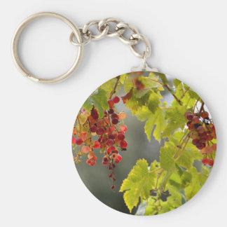 Llavero Uvas rojas del primer entre las hojas