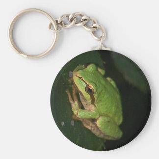 Llavero verde de la rana arbórea