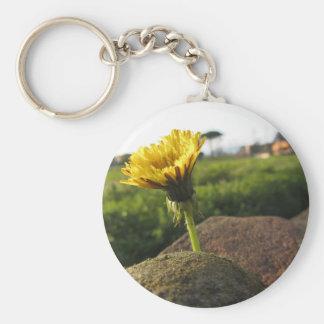 Llavero Wildflower amarillo que crece en piedras en la