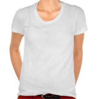 Llevado amar rap camisetas