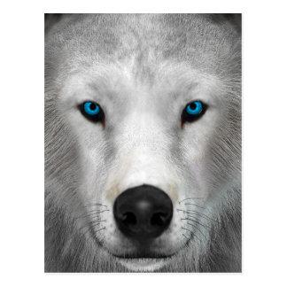Lobo ártico postal