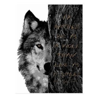 Lobo contra ovejas postal