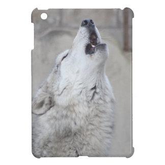 Lobo gris del grito