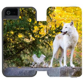 Lobo gris, follaje de oro funda cartera para iPhone 5 watson