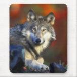 Lobo gris, fotografía de Digitaces en peligro de Alfombrilla De Ratón