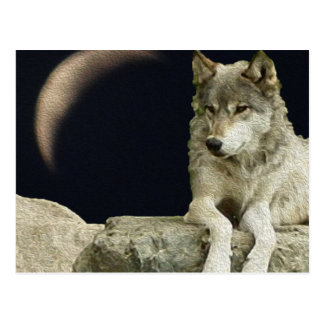 Lobo que se relaja postal