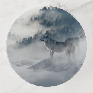 Lobo solitario en el salvaje
