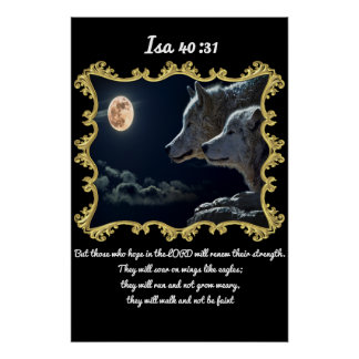 Lobos del 40:31 del AIA que miran en la Luna Llena Póster
