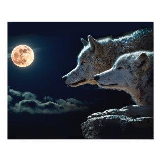 Lobos del lobo que gritan en la Luna Llena Folleto 11,4 X 14,2 Cm