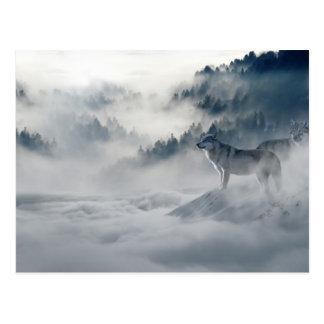 Lobos en postal del invierno