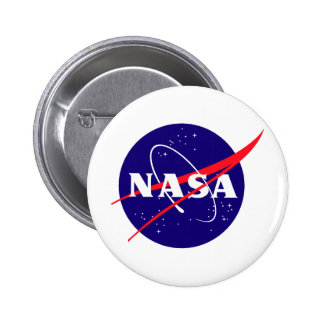 Logotipo de la albóndiga de la NASA Pins