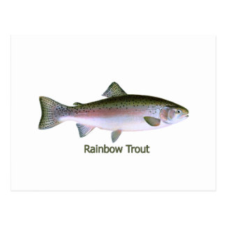 Logotipo de la pesca de la trucha arco iris postal