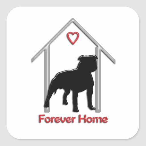 Logotipo negro para siempre casero de Pitbull Calcomanía Cuadradas