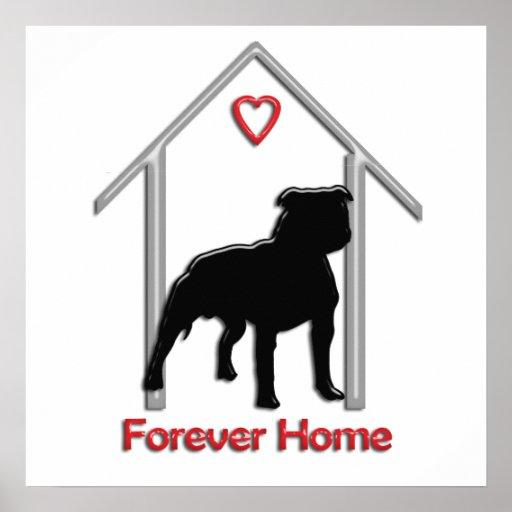 Logotipo negro para siempre casero de Pitbull Poster