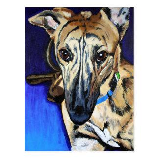 Loki - perro del acechador postal