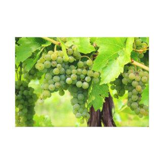 LONA 1ra de JAV. Uvas verdes 2013 de Croix Impresion En Lona