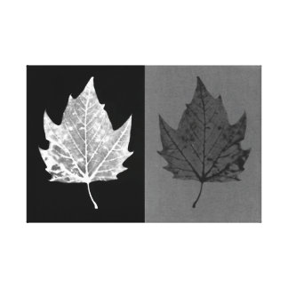 Lona blanco y negro de las hojas de otoño lienzo