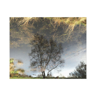 Lona de arte hermosa del árbol de la fotografía de