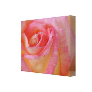 Lona de ruborización del rosa amarillo impresión en lienzo