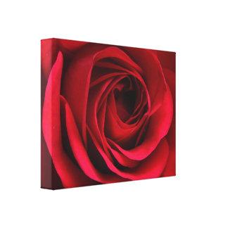 Lona del rosa rojo del escarlata impresión en lienzo