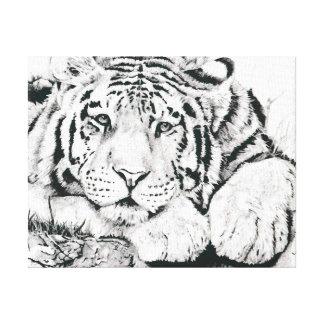 Lona del tigre de las reflexiones lienzo