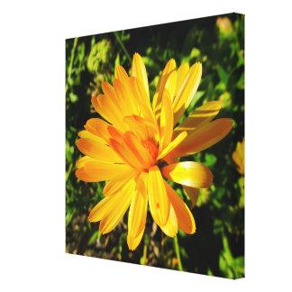 Lona envuelta flor amarilla lienzo