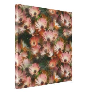 Lona envuelta flor rosada de las margaritas africa lienzo envuelto para galerías