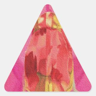 Lona Pegatina Triangular