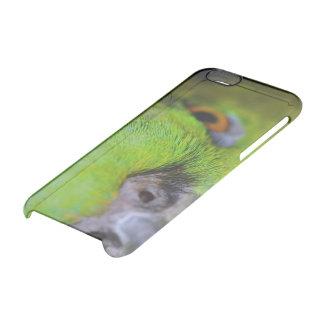 Loro Amarillo-Naped del Amazonas de Shirley Taylor Funda Clearly™ Deflector Para iPhone 6 De Uncommon