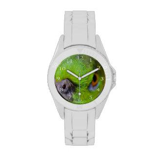 Loro Amarillo-Naped Relojes