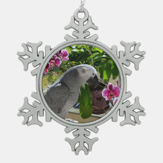 Loro del gris africano con las orquídeas adorno de peltre en forma de copo de nieve
