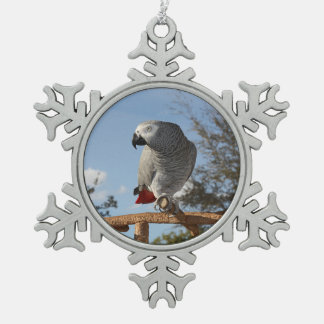 Loro imponente del gris africano adorno de peltre en forma de copo de nieve