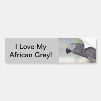 Loro magnífico del gris africano pegatina para coche