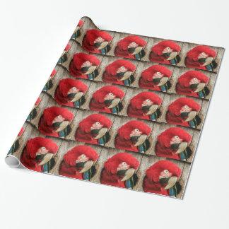 Loro verde del macaw del ala del papel de embalaje