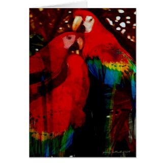 Loros de la tarjeta del Amazonas