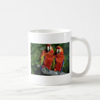 Loros del Amazonas Tazas De Café