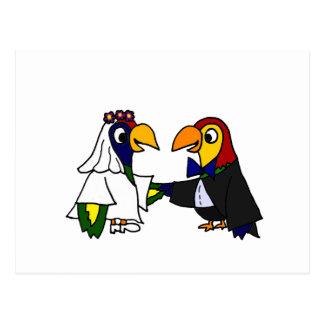 Loros divertidos que casan arte postal