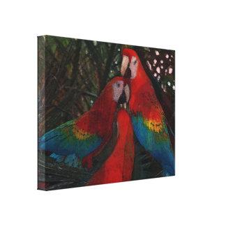 Loros rojos del Amazonas Impresión En Lienzo Estirada