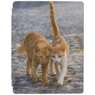 Los amigos mimosos lindos de los gatitos de los cubierta de iPad