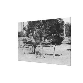 Los Ángeles escena del carro de la granja de la a Impresion En Lona