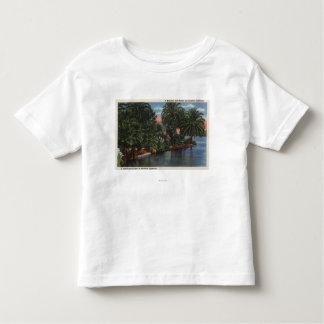 Los Ángeles, escena hermosa del parque de Camiseta