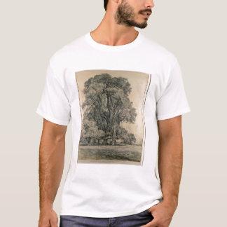 Los árboles de olmo en viejo Pasillo parquean, Camiseta