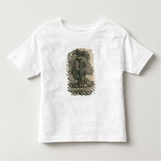 Los árboles de olmo en viejo Pasillo parquean, Camiseta De Bebé