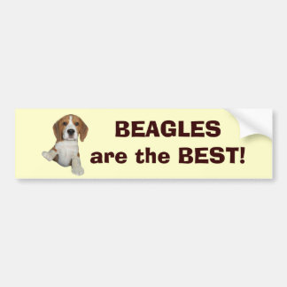 Los beagles son la mejor pegatina para el parachoq pegatina de parachoque