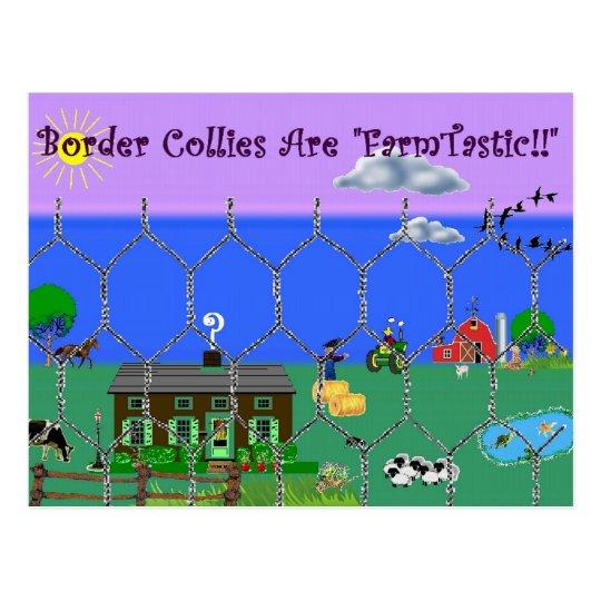 """Los borderes collies son """"~Postcard de Tastic de Postal"""