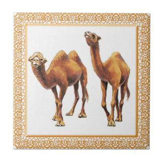 Los camellos Uno-Ir-Van teja