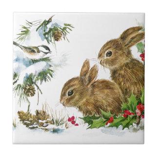 Los conejitos y el pájaro gozan de nieve azulejo