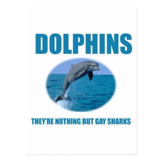 Los delfínes son tiburones gay postal